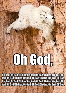 goat-climbing-oh-god-oh-god